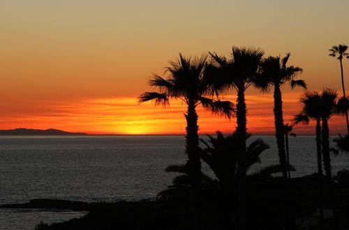 Montage sunset