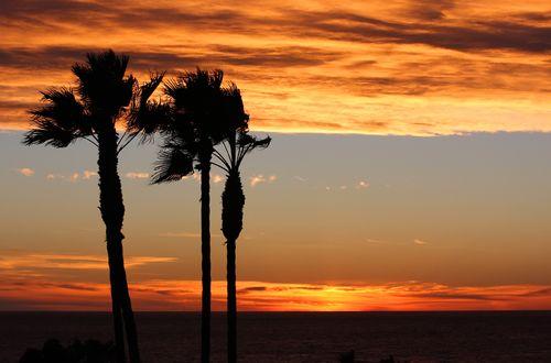 Sunset 2010 small