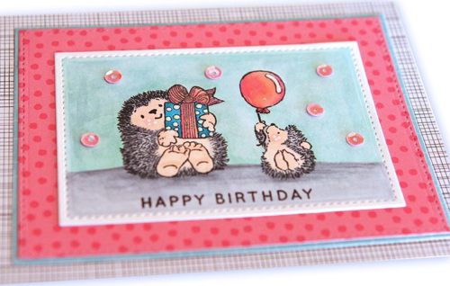 Happy birthday hedgehog close up