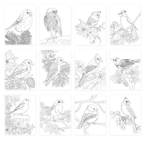 Winter Birds Index